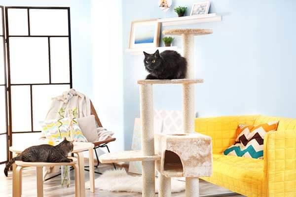 Chat noir installé sur un arbre à chat