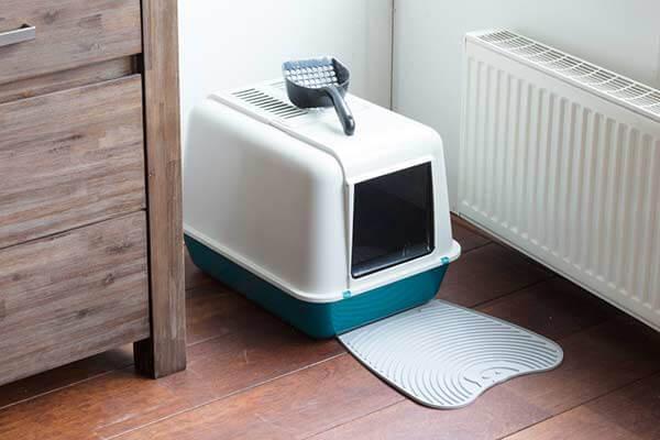 Maison de toilette pour chat installée dans un coin à proximité d'un meuble