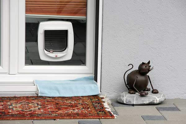 Chatière installée dans une fenêtre
