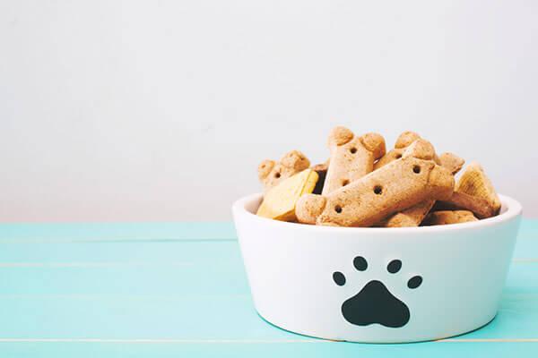 Gamelle contenant des friandises pour chien