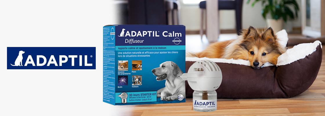 ADAPTIL® :  Nouvelles données scientifiques en élevage canin