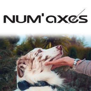 Canicom Voice : le premier collier d'éducation du chien par la voix