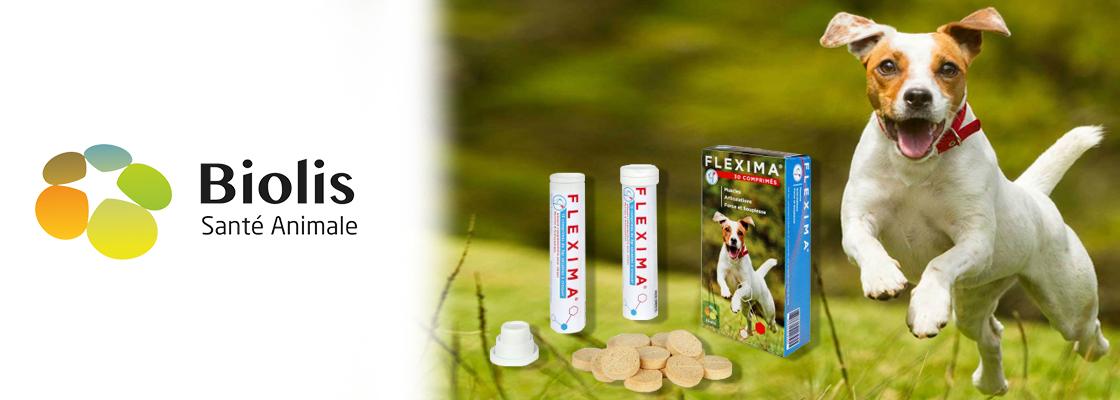 Musclez la préparation hivernale de votre chien avec FLEXIMA®