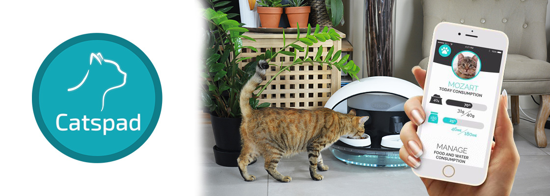 CATSPAD, l'objet connecté qui prend soin du bien-être de mon chat !