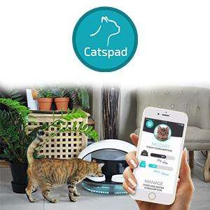 CATSPAD, l