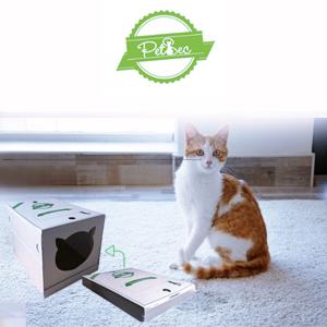 Petsec : Voyager éco-responsable et au sec avec votre chat !