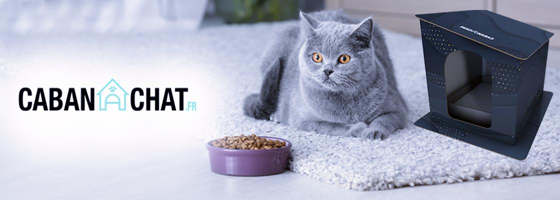CABANACHAT : la maison en carton pour chat