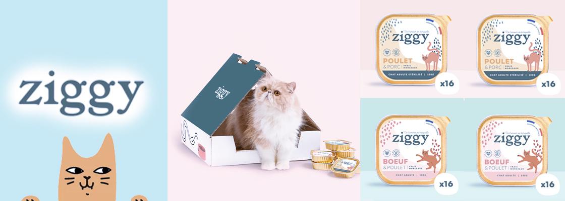 Ziggy : La nouvelle marque de pâtée pour chats, zéro compromis