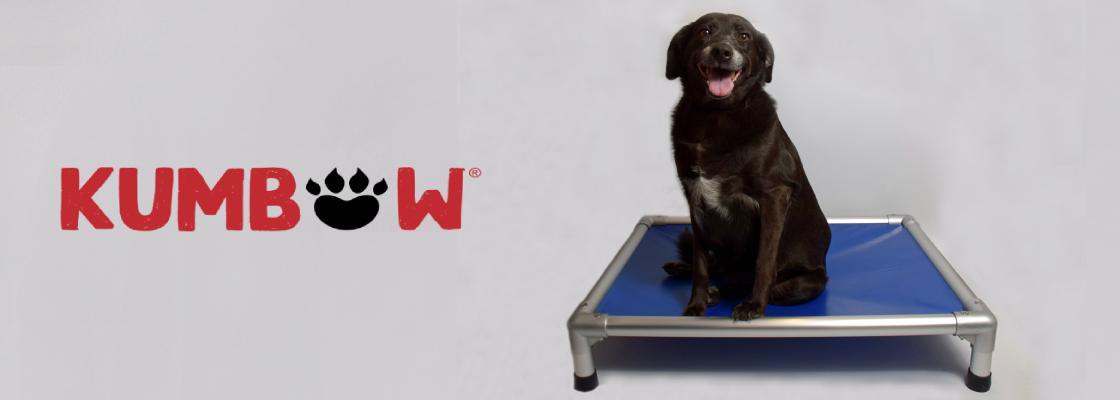 Kumbow : Le 1er lit indestructible pour chien
