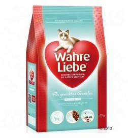 Wahre Liebe pour chat en surpoids