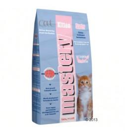 Mastery Cat Kitten Starter