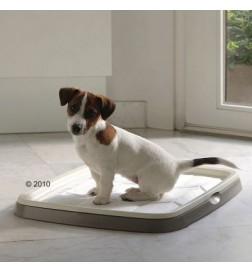 Toilettes Puppy Trainer pour chiot