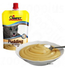 Pudding pour chat