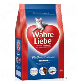 Wahre Liebe pour chat senior