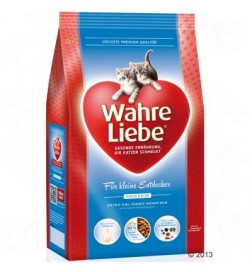 Wahre Liebe pour chaton