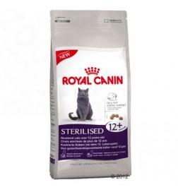 Sterilised 12+ pour chat