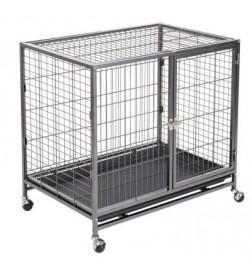 Cage d'intérieur Tabby