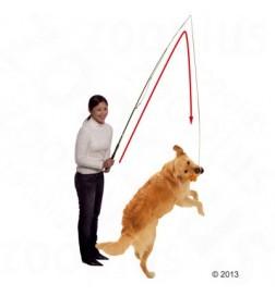 Canne à pêche d'entraînement Dog Dangler