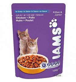 Sachets Iams Kitten & Junior