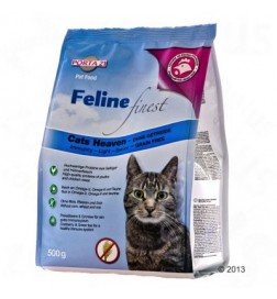 Feline Finest Cats Heaven