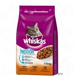 Croquettes Whiskas Indoor