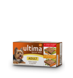 Aliment humide Mini Adult