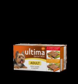 Aliment humide Mini Adult