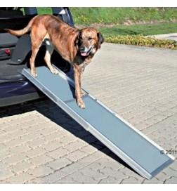 Rampe Petwalk pour chien