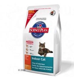 Feline Indoor Cat Adult