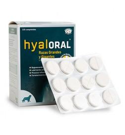 Chondroprotecteur Hyaloral pour grandes et géantes races