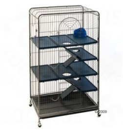 Cage Perfect pour furet et chinchilla