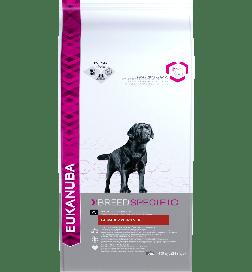 Breed Labrador Retriever
