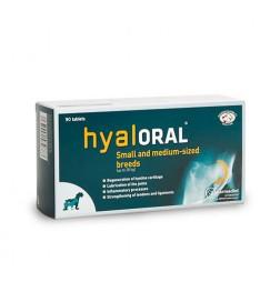 Chondroprotecteur Hyaloral pour petites et moyennes races