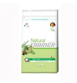Trainer Natural Maxi boeuf riz & ginseng