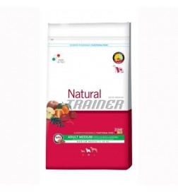 Trainer Natural Medium bœuf riz & ginseng