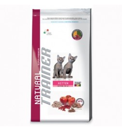 Trainer Natural pour chaton