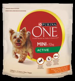 One Mini Active