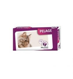 Pet-Phos Pelage Chat