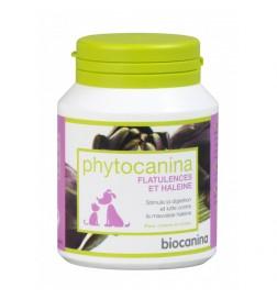 Phytocanina flatulences et haleine