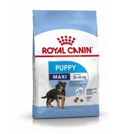 maxi puppy royal canin pas cher achat meilleur prix. Black Bedroom Furniture Sets. Home Design Ideas