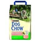 Dog Chow Adulte Sensitive saumon et riz