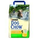 Dog Chow complet poulet et riz