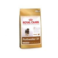Breed Nutrition Rottweiler Junior 31