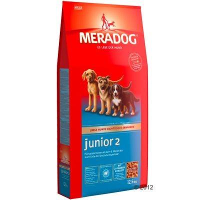 Meradog Junior 2