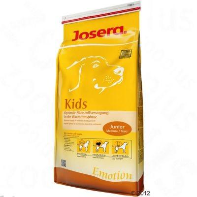 Kids pour chiot