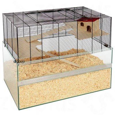 Cage Falco