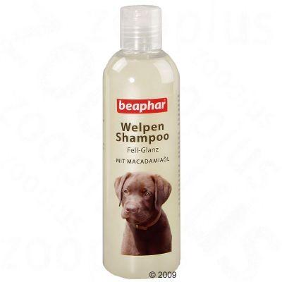 Shampooing brillant pour chiot