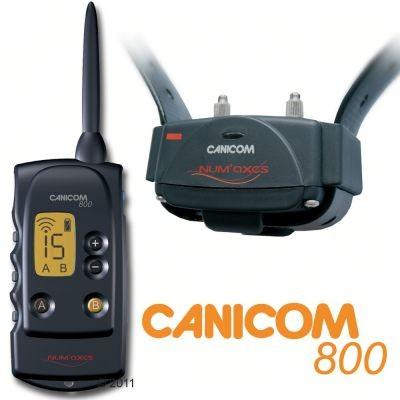 Collier de dressage Canicom 800 pour chien
