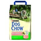 Dog Chow Adulte Sensitive saumon et riz