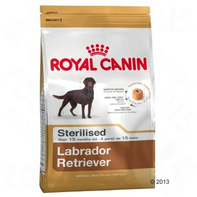 Breed Labrador Retriever Adult Sterilised